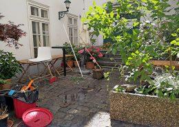 My Secret Garden is getting ready